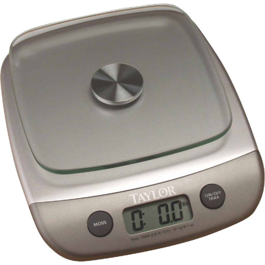 Taylor 8 Lb. Capacity Digital Food Scale